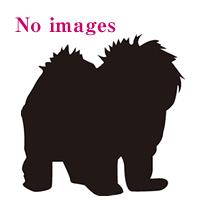 no_images