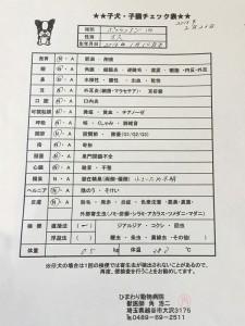 160222-04_shindansyo